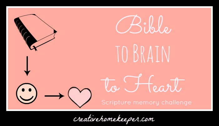 Scripture Memory Challenge {Bible to Brain to Heart}