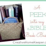 A Peek into My Bible Book Basket