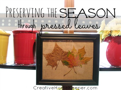Preserving the Season Through Pressed Leaves