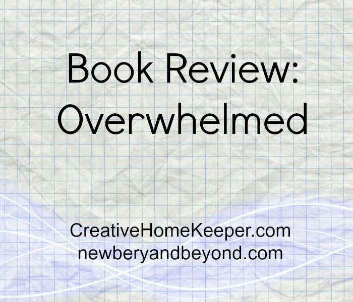 Feeling overwhelmed? You're not alone, so many feel the same way. The book Overwhelmed shares some great insight into the why and how we feel so overwhelmed.