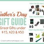 Father's Day Gift Guide: Gifts for the Dads in Your Life for under $15, $25 or $50