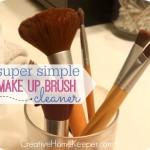 Super Simple Makeup Brush Cleaner