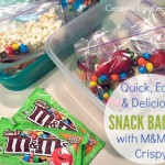 Quick, Easy and Delicious Snack Baggies