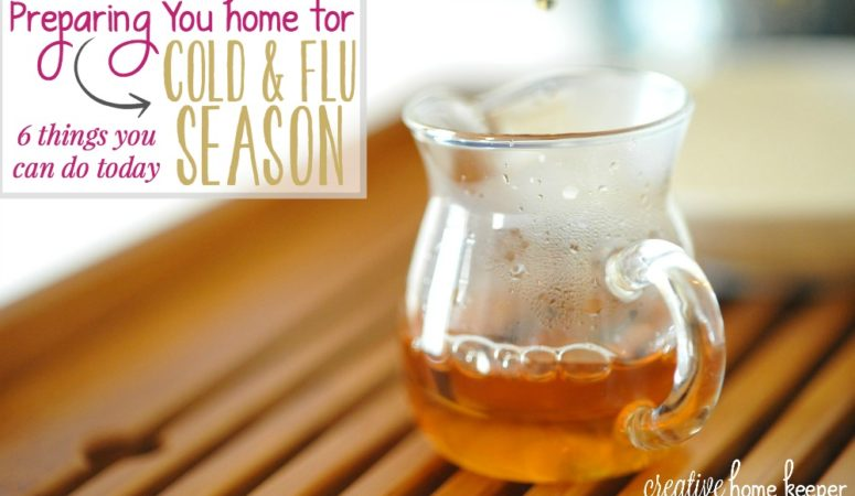 Preparing Your Home for Cold and Flu Season