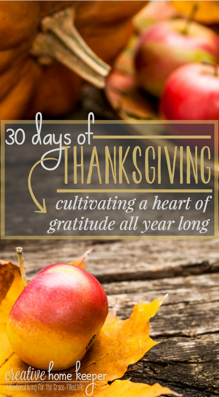 Cultivating gratitude and practicing thanksgiving isn't just reserved for the month of November. They are spiritual disciplines we can include in our everyday daily devotional time. Start the disciple by practicing gratitude for 30 days with these simple ideas to draw your heart closer to all the gifts and blessings from above.