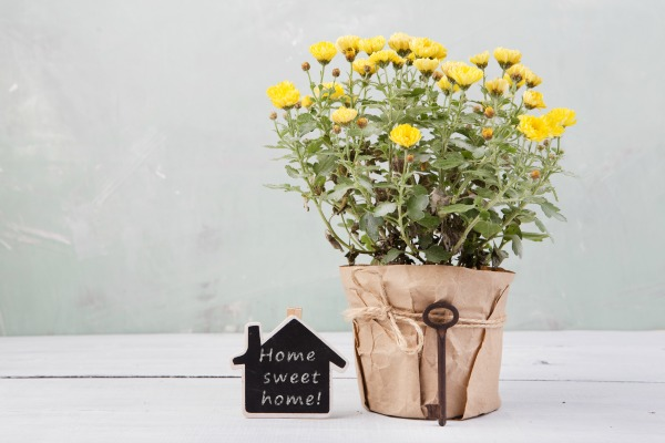Why Homemaking Still Matters Today More Than Ever